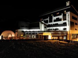 阿勒克希诺酒店