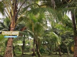 Selva Cielito