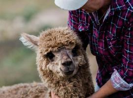 Nature's Echo Farm Stay