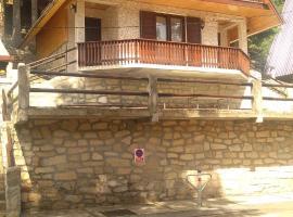 Vila Grudvica