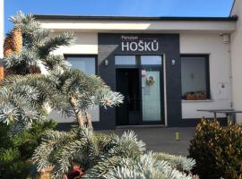 Penzion u Hošků