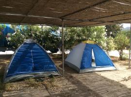阿奇法多琳妮露营地