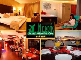 尼夫罗斯度假酒店及Spa中心