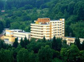 杰米萨拉酒店, Geoagiu Băi