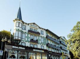 维多利亚酒店,位于巴特哈尔茨堡的酒店