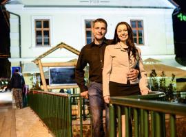 莫斯图小学酒店, Dolenjske Toplice