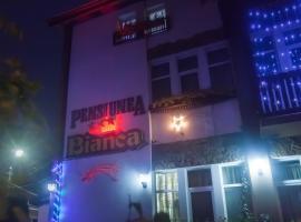 比安卡旅馆, 博托沙尼