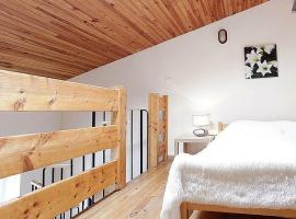 图卢兹中心复式度假屋