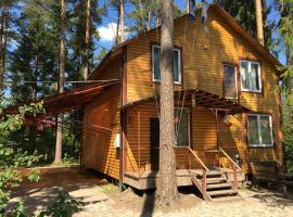 Vyritskie Tarkhany Holiday Home, Vyritsa (Oredezh River附近)