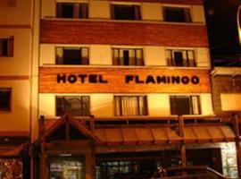 火烈鸟酒店