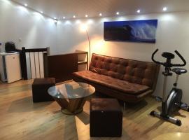 科维市中心舒适一室公寓