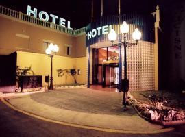 埃尔瑟斯尼酒店