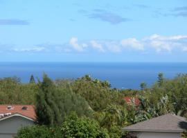 Waikoloa Honu