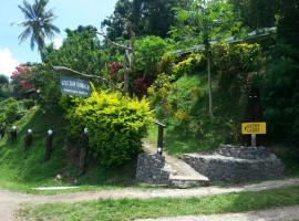 斐济壁虎山林小屋