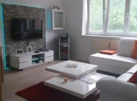 Apartment Meschnik
