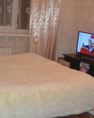 Apartment on Sovetskaya 52