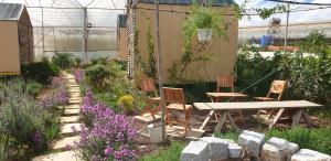 Eco-Dream Farmstay