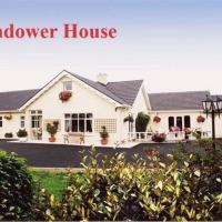 Glendower House,位于新罗斯的酒店