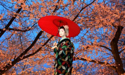 bAKpAK Japan